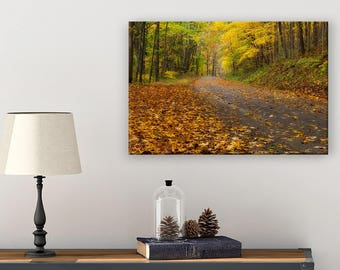 Ohio Wall Decor - Nature Wall Art - Photography Wall Art - Enchanted Forest - Hocking Hills - Fall Leaves - Autumn Art - Fall Art