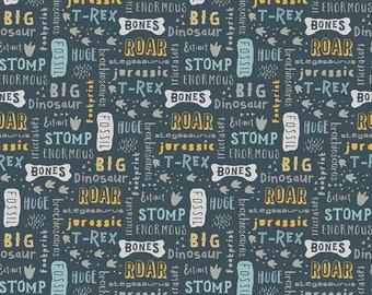 Fossil Rim Words Knit, Fossil Rim, Denna Rutter, Riley Blake Fabric, dinosaur fabric, dinosaur knit fabric by the yard, boy fabric