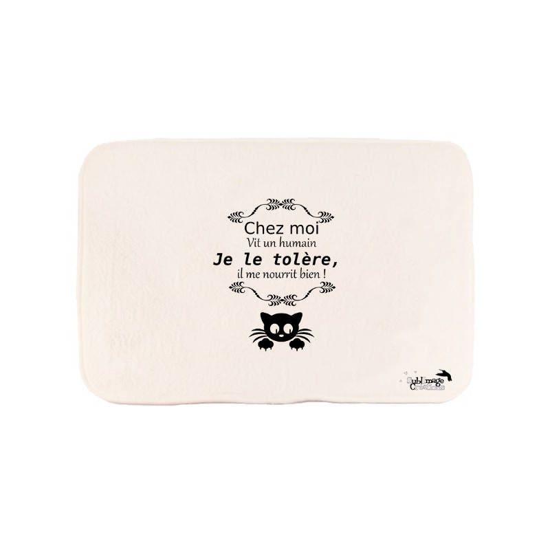 Tapis De Bain Original Id E Cadeau Original Et Personnalis E Chat Humour Chez Moi Vit Un