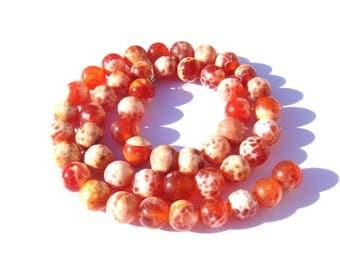 The orange tinted Brazil agate: 11 beads 7/8 mm in diameter