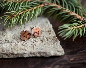 Shiny Fox Earrings