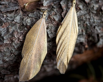 Dipped Feather Earrings