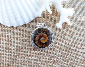 Round Ammonite Fossil Sterling Silver Pendant