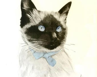 Presidential Savings Siamese Cat Lithograph Blue Eyes Signed Danet Frederick & Nelson French Mid Century