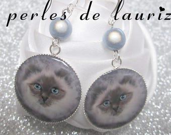 These earrings a splendour cat