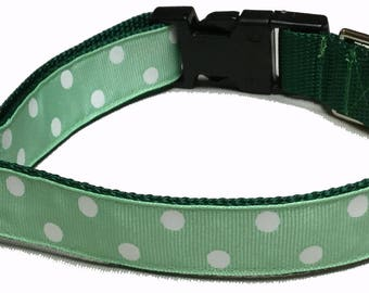 Dog Collar, Dots - White on Mint Green