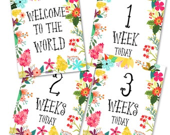 Baby Milestone Cards Printable, Baby Shower, Baby Monthly Cards, Baby Keepsakes, Baby Announcement Cards