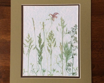 Pressed Flower Art Print - Wild Weeds