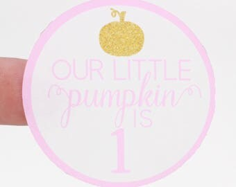 Our Little Pumpkin Is One Sticker - Pumpkin Birthday Treat Bag Sticker - Personalized Stickers