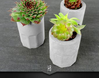 "3x ""Plant shot large"" made of concrete, planted with succulents"