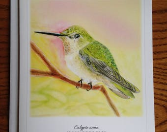4.25x5.5 Anna's Hummingbird Greeting Card