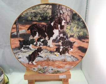Vintage Springer Spaniel Plate from The Hamilton Collection