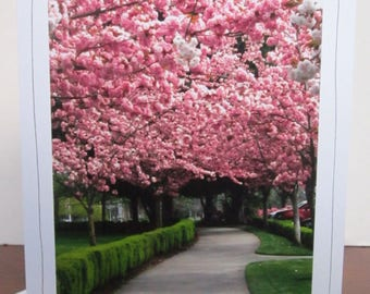 Photo Greeting Card   Handmade Card   Photo Note Card   Original Photography   Pink Blossoms