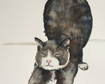 Cats - For Cat Lovers.  Stretchy Cat 1. PRINTS A Charming Watercolour and Pen and Ink illustration.