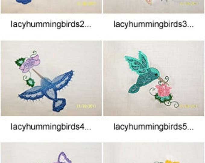Colorlace-Hummingbirds ( 10 Machine Embroidery Designs from ATW ) XYZ17F