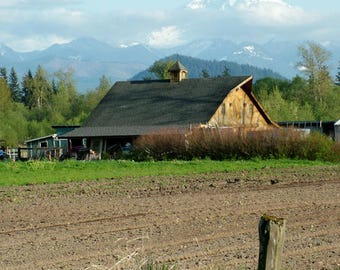 "Barn Photography, Mt. Rainier,  Mountain, Country Picture, Farm Artwork, Old Buildings, Farmhouse Decor, Rustic Wall Art, ""Gold Nugget"""