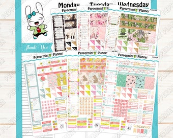 Mini Monthly --- January 2018 - June 2018 --- for use with the Mini Happy Planner