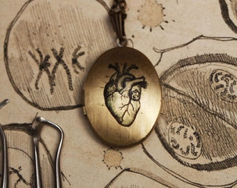 Anatomical heart locket, photo locket, steampunk locket, mad scientist, gothic jewelry, science jewelry, steampunk pendant, dark style