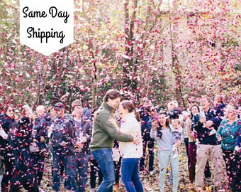 Gender Reveal| Gender Reveal Party| Gender Reveal Ideas| Gender Reveal Confetti Cannon| Smoke Bomb Alt| Gender Reveal Poppers| Popper