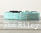 Unisex Dog Collar, DOG COLLARS, The Riley, Dog Collar, Boy Dog Collars, Dog Collars for Boys, Girl Dog Collar