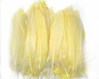 6-8 inch All Yellow Natural dip died Goose Feathers
