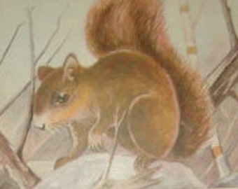 Vintage Animal Postcard (Fox Squirrel)