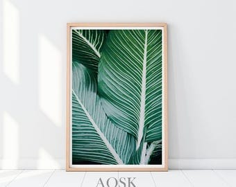 Banana Leaves Art, Wall Art Banana, Plant Leaf Art Print, Palm Print Wall Art, Banana Leaf Print, Modern Leaves Print, Palm Printable Art