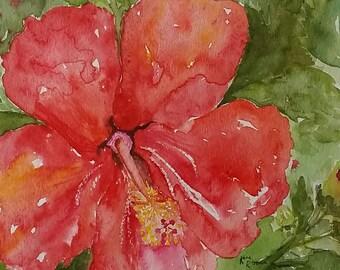 Hibiscus Flower Original Watercolor Painting