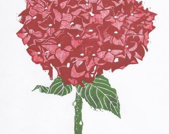 Red Hydrangea print
