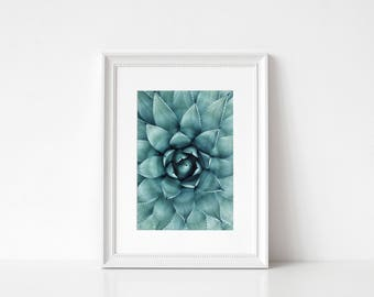 Succulent Print/ Cactus Print/ Printable Art/ Plant Print/ Botanical Print/ Abstract Nature Print/ Macro Nature Print/ Succulent Wall Art