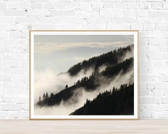 Misty Rainforest Print |  Rainforest Art |  Instant Download |  Rainforest Photography | Trees Art | Contemporary Trees | Rainforest picture