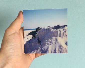 Beachsaurus no04 - Mama Rex builds a sand Castle - Polaroid print, photography on ALU-Dibond 9 × 9, shiny