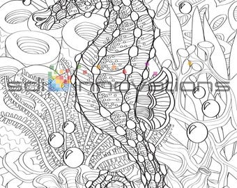Seahorse Adult Coloring Book Page