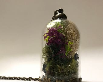 Moss Terrarium Pendant Necklace