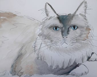 Custom pet portraits Original Watercolour and Ink Sketches