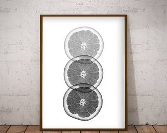 Black and white citrus print. Instant Download, printable digital print. Posters with black and white fruits