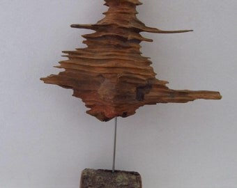 unusual natural wood sculpture - bellywood