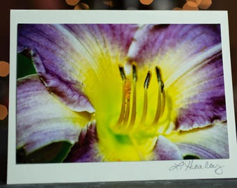 Purple Lily Photo Greeting Card