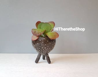 Special Edition! Handmade ceramic legged plant pot -  White dots on black/charcoal clay, pinch pot, home studio pottery, succulent pot.
