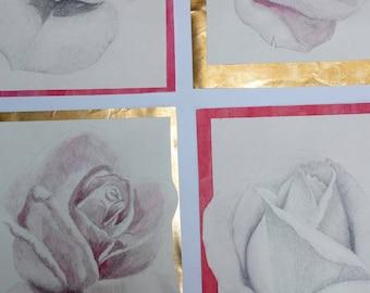 Roses from Valparaíso