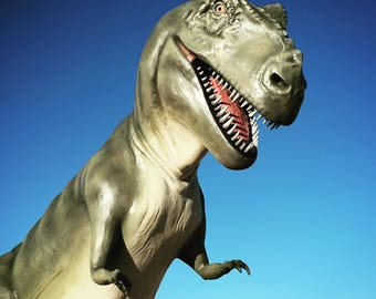T-Rex in New Mexico