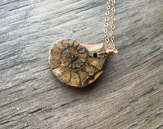 Ammonite Fossil LIttles Necklace Old Gift Unique Rose Gold Filled
