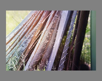 Industrial Theme Photo Print, Leaning Old Rusty Distressed Scrap Metal Fencing in Grass and Bright Sunlight, Man Cave Wall Art