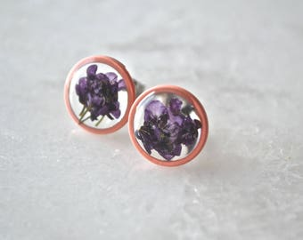 Purple Alyssum Earrings Pressed Flower Jewelry Botanical Stud Earrings