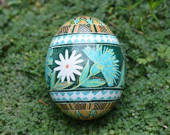 Pysanka egg with daisies and cornflower on deep green field wonderful gift idea