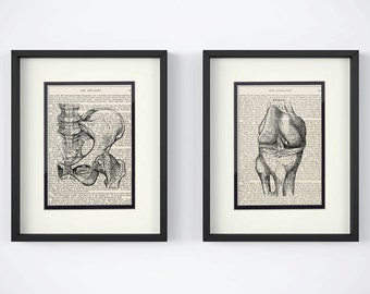 Orthopedic, Set of 2 Prints - Hip, Knee over Vintage Medical Book Pages - Orthopedic Surgeon, Orthopedic Gift, Orthopedic Art, Ortho