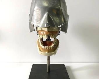 Aluminum Dental Phantom with complete vintage dentoform teeth set on display stand