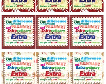 """instant download / DIY Printable """"The Little Extra"""" Holiday Gift Tags"""
