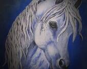Horse Print Spirit Stalli...