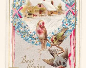 Winter Robins Birthday Postcard, c. 1910